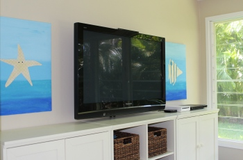 Children's TV Room White Cabinets Custom Sealife Artwork